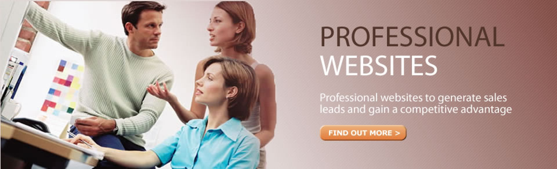 Professional Websites